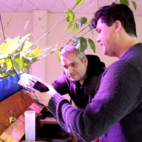 Temple alumni develop new monitoring system for aquaponics