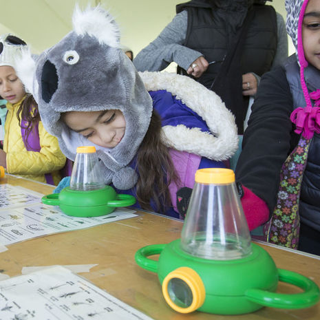 Temple University Ambler Teacher Workshop Spotlights Outdoor Classroom Design