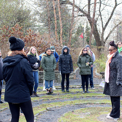 Combating Stress with Nature at Temple Ambler