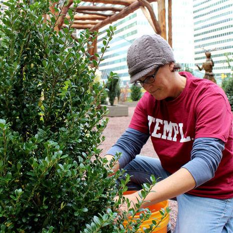 Temple helps create winter wonderland in the heart of Philadelphia