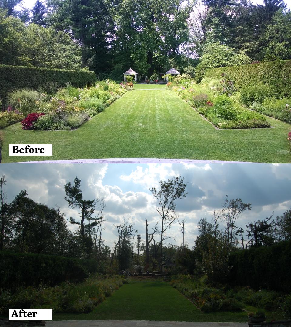The Formal Perennial Garden and Woodland Garden.