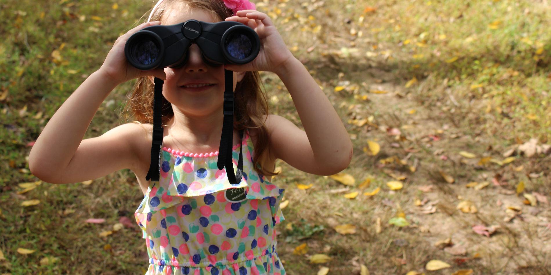 Using binoculars at BioBlitz