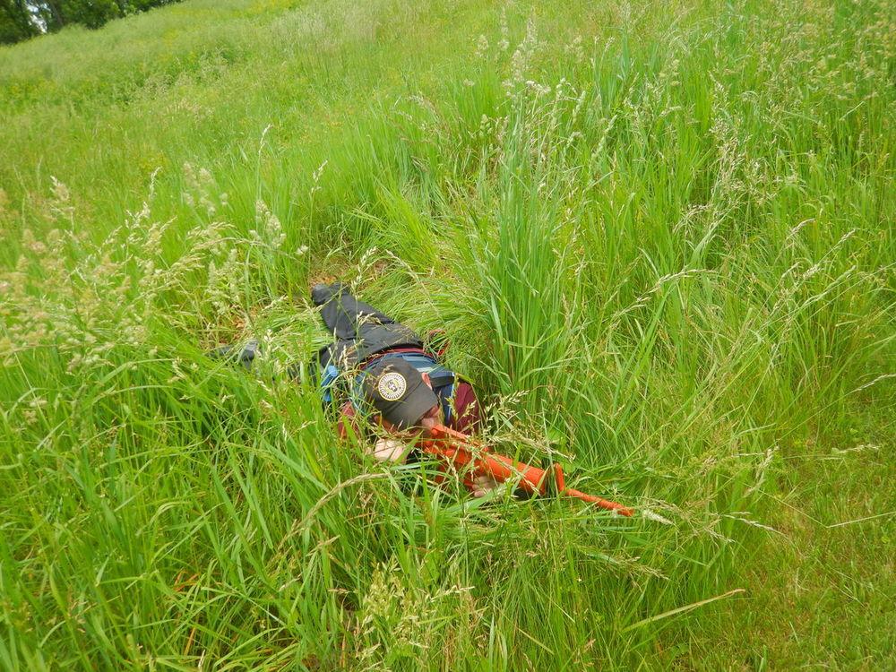 cadet in tall grass
