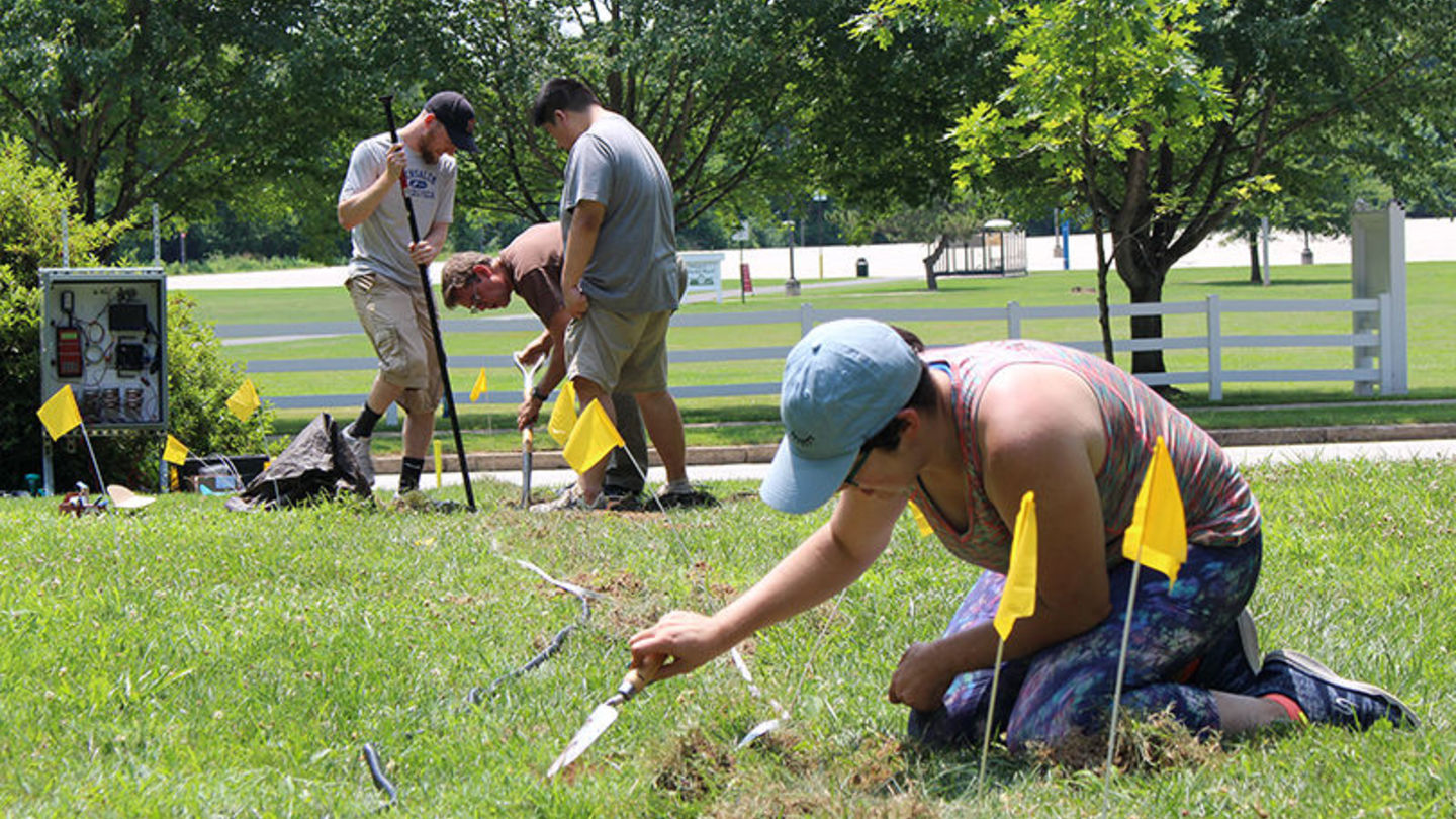 Temple Ambler to host Green Careers Fair and BioBlitz